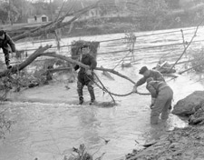 Photograph of soldiers using a chain to clear away a fallen tree, Toronto, November 1954