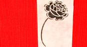 Detail of the box of LES ROSES by Lucie Lambert